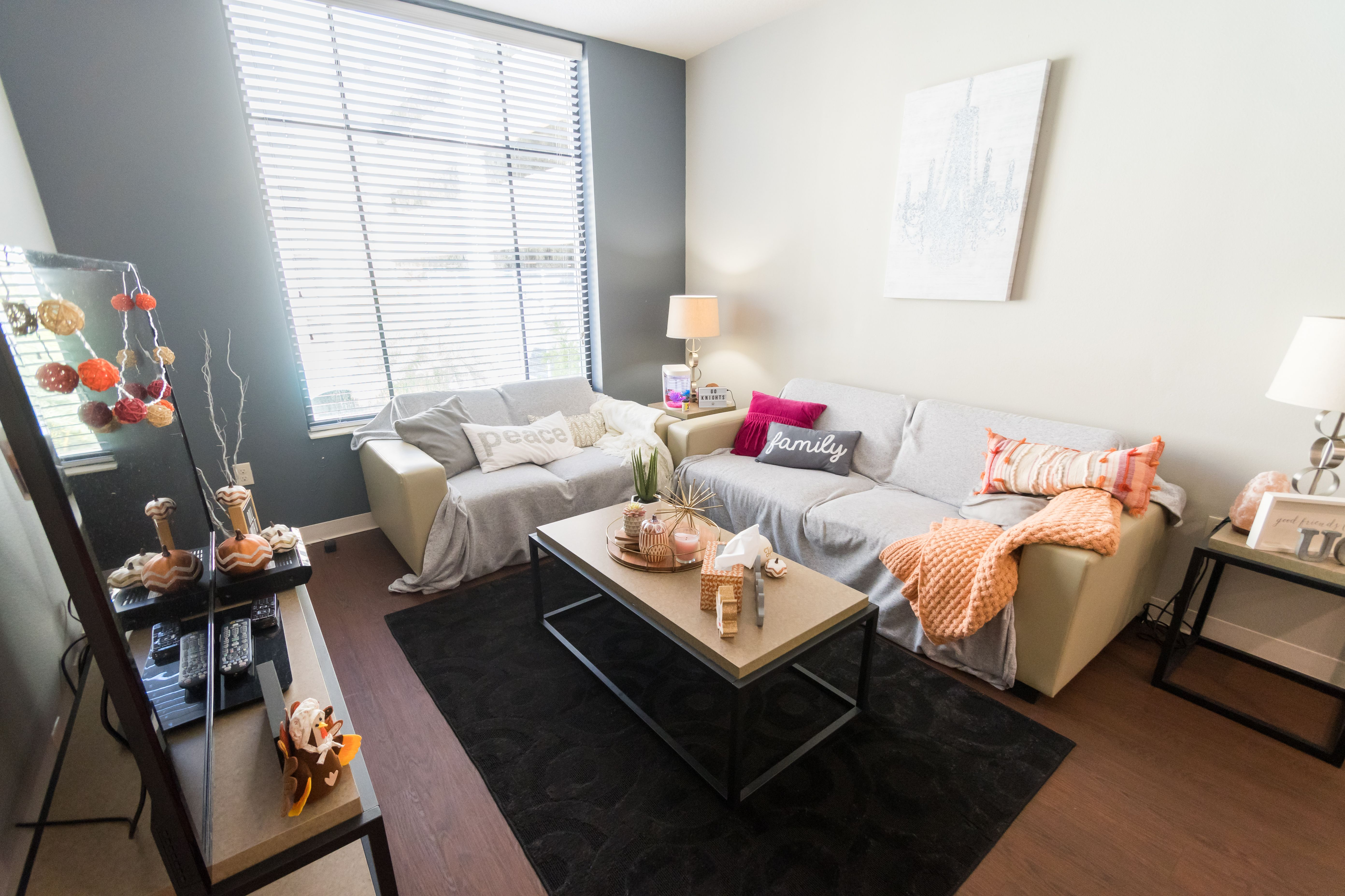 This Northview Living Room Added Throws And Pillows To Look This Cozy Dorm Inspiration Ucf Dorm Room