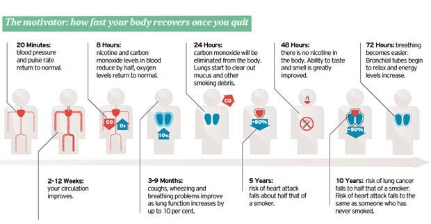 What happens after you quit smoking charts use with cadette journey breathe also rh pinterest