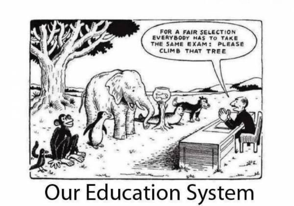 the problem the us education system education system