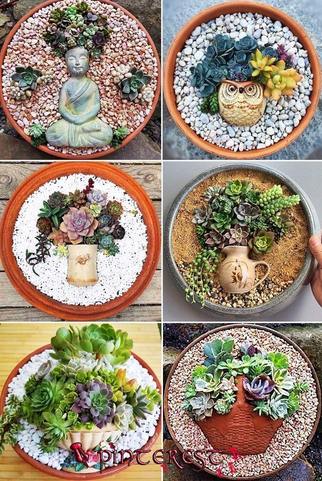 MENTŐÖTLET - kreáció, újrahasznosítás | Succulent gardening, Succulent landscaping, Succulent pots