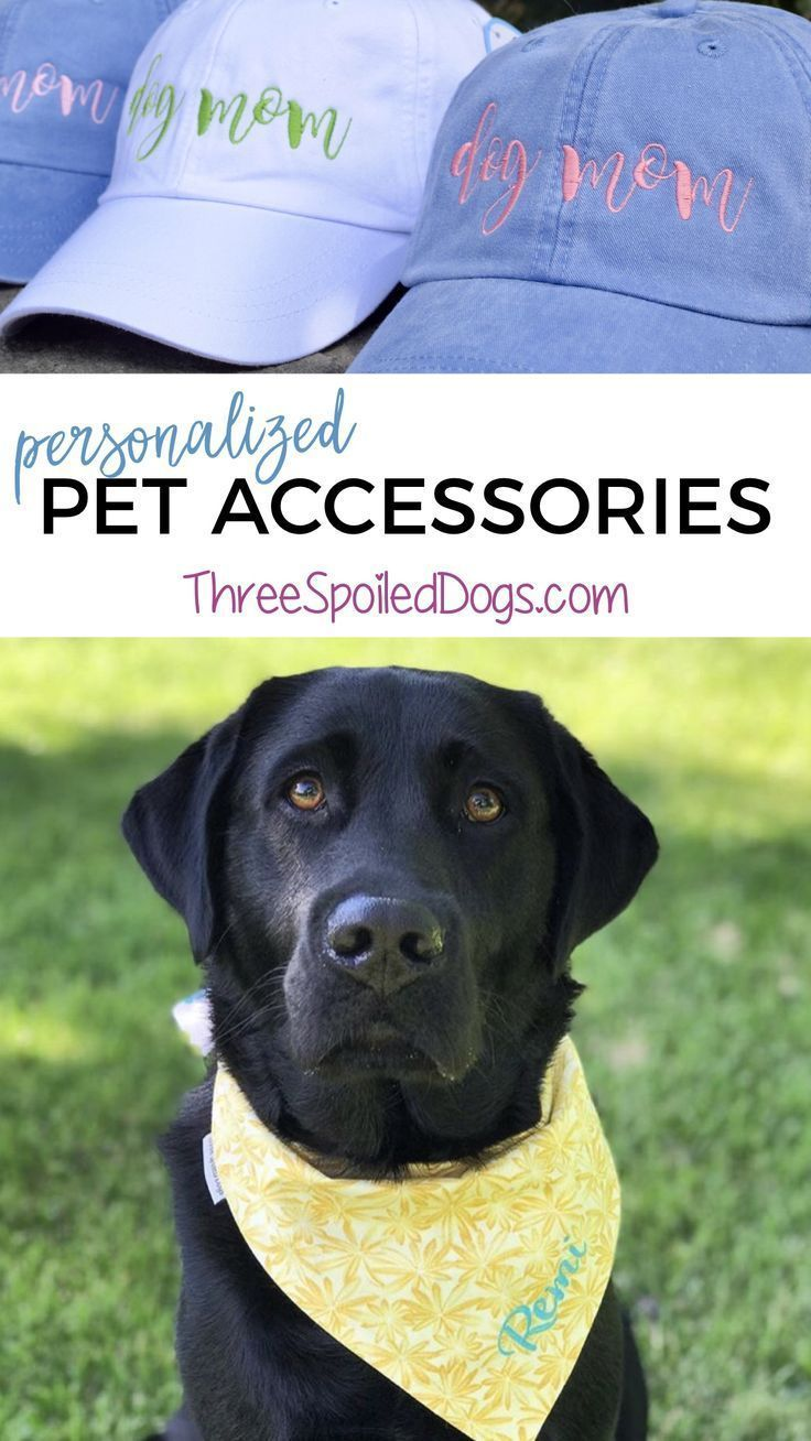 Cute pets need equally cute accessories dogmom breedmom