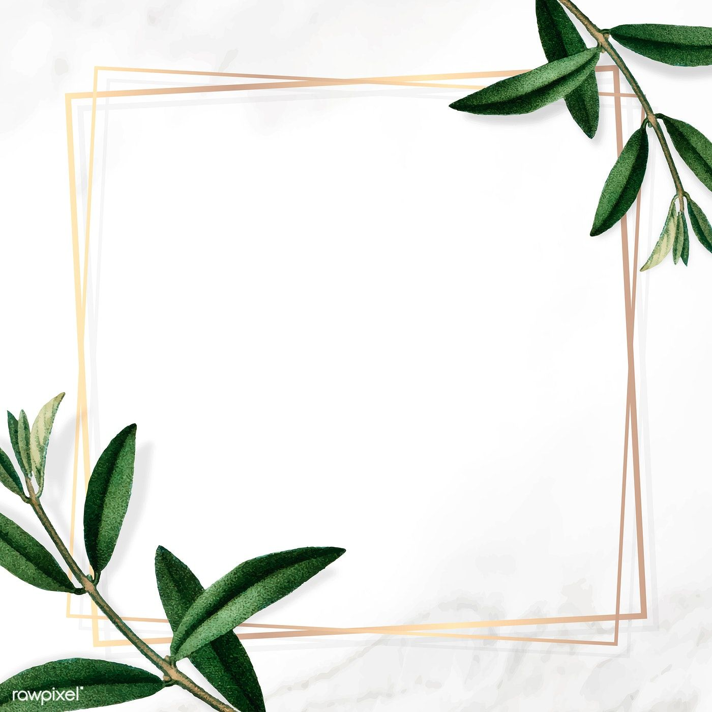 Download Premium Vector Of Gold Frame With Green Leaves On White Green Leaf Background Gold Frame Flower Background Wallpaper