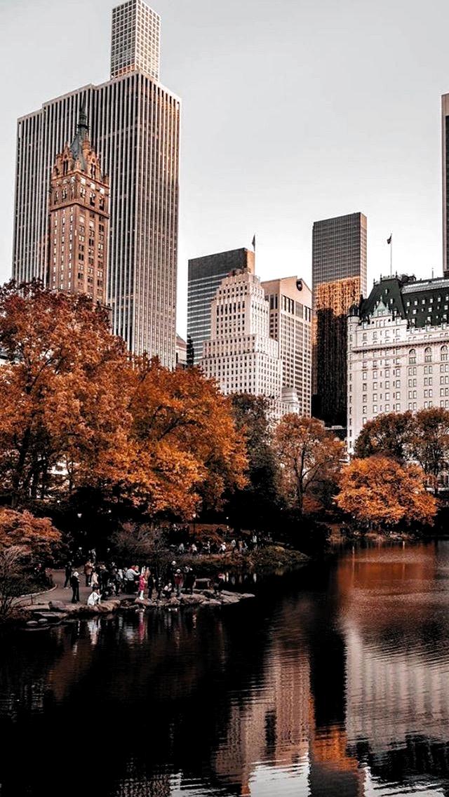 Autumninnewyork Fall Photography City Aesthetic City Photography Autumn In New York