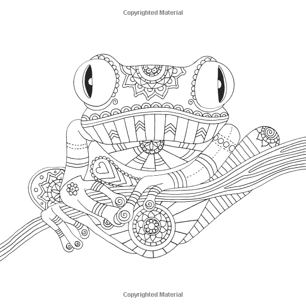 adult coloring page frog tree frog tropical wildlife ...
