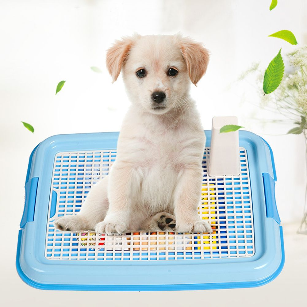 Training Toilet For Small Dogs Dog Toilet Puppy Litter Puppy Pads