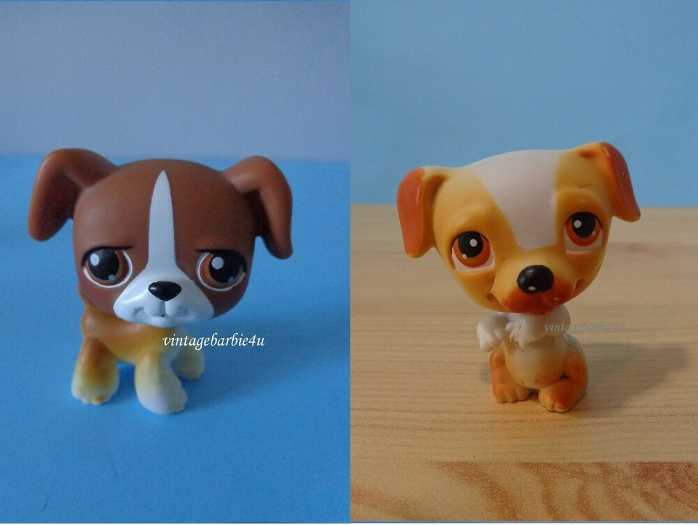 Littlest Pet Shop Lps 25 40 Boxer Jack Russell Terrier 2004 Dog
