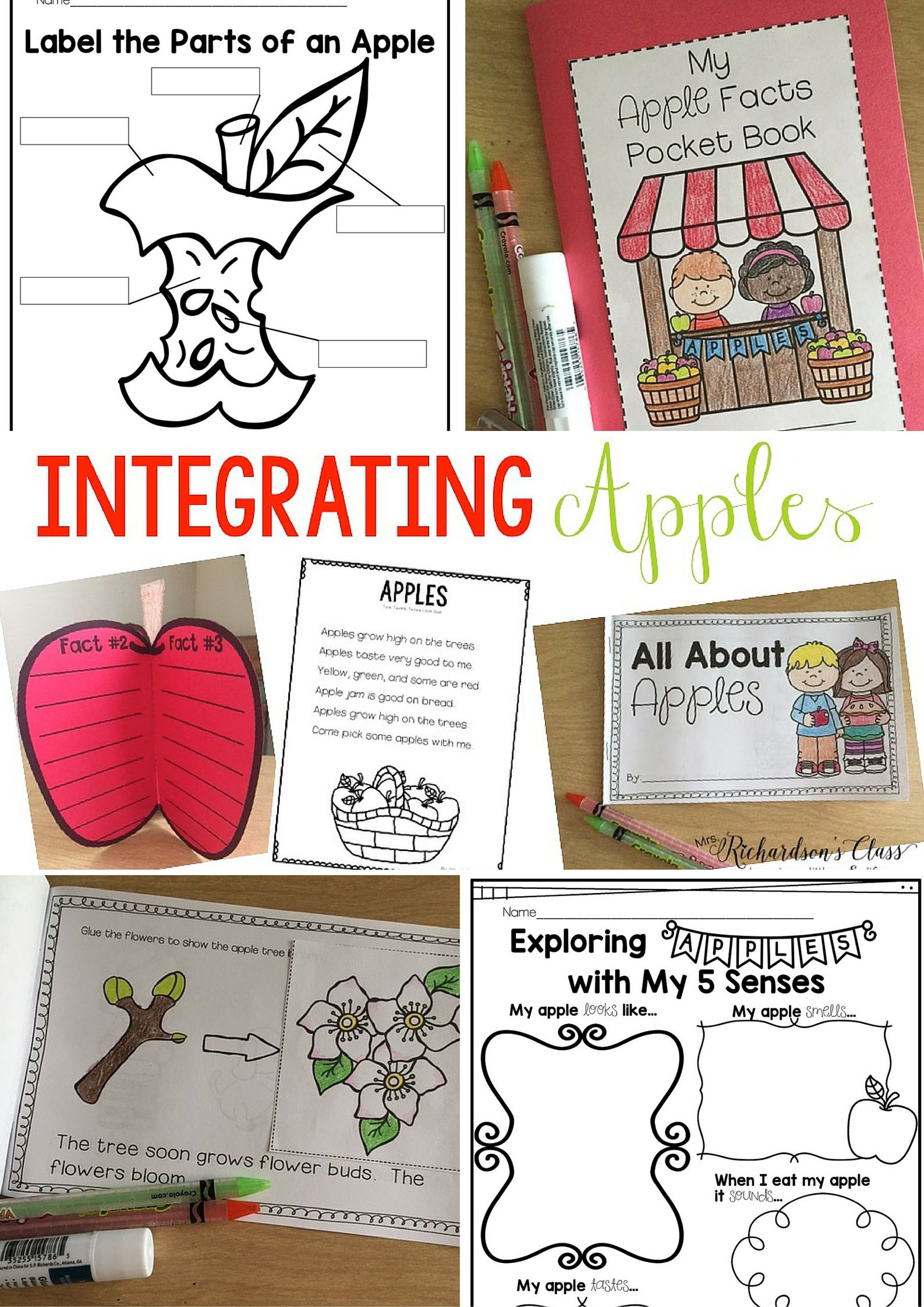 All About Apples And A Poetry Freebie