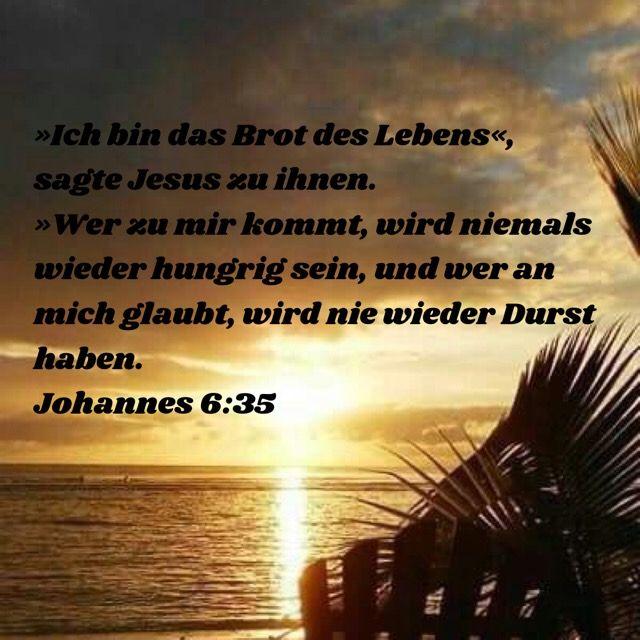 Johannes 6 35