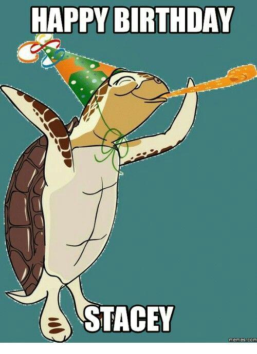 198947a62dd302e3568d60a78b35d510 happy birthday stacey memes com com meme on me me sea turtles