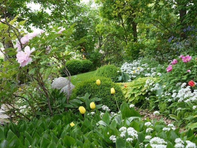 Fruhling Plants Garden