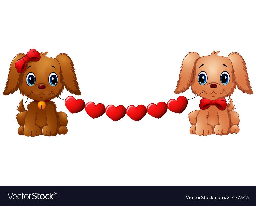 Download Couple valentine dogs with red heart vector image on