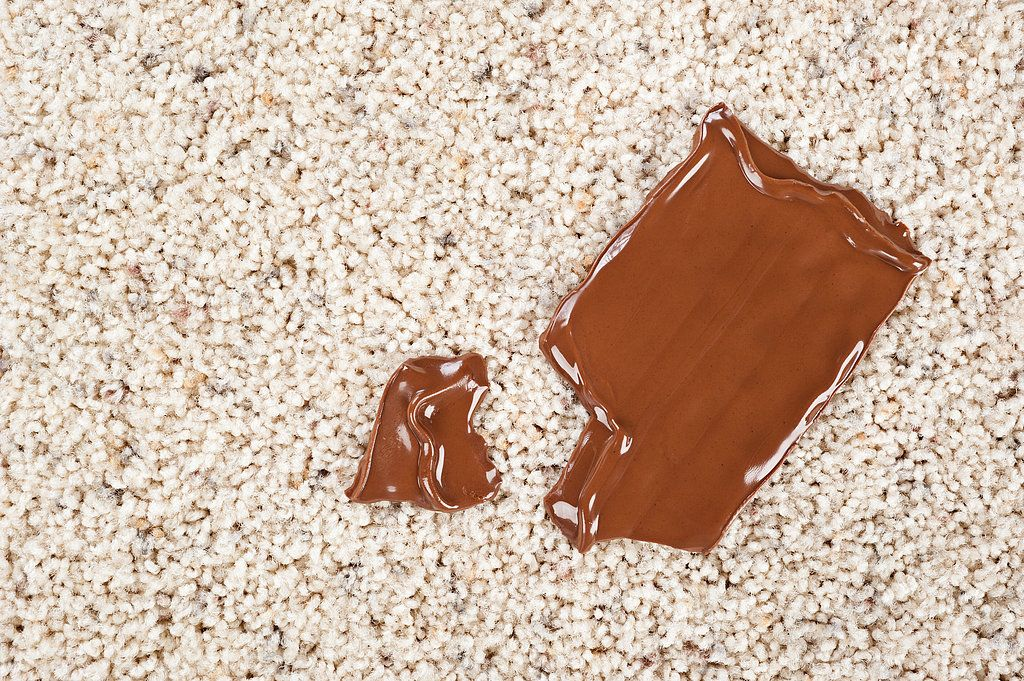 how to get chocolate milk out of couch