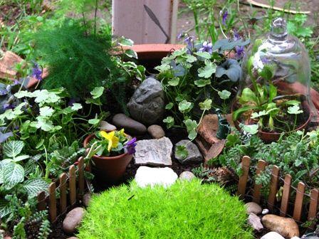 Fantastic Fairy Garden Calloways Nursery Garden Enchanted Garden Fairy Garden Accessories