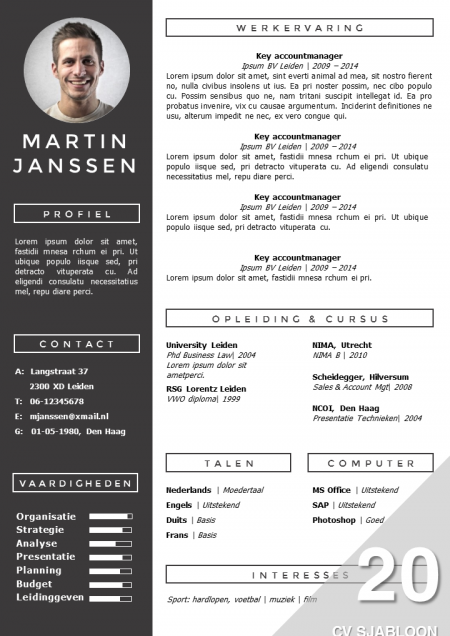 CV Sjabloon 20 | Cv template, Template and Resume cv