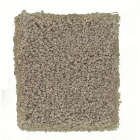 Stainmaster Petprotect Greyhound 12 Ft Siamese Textured Indoor Carpet Indoor Carpet Textured Carpet Carpet