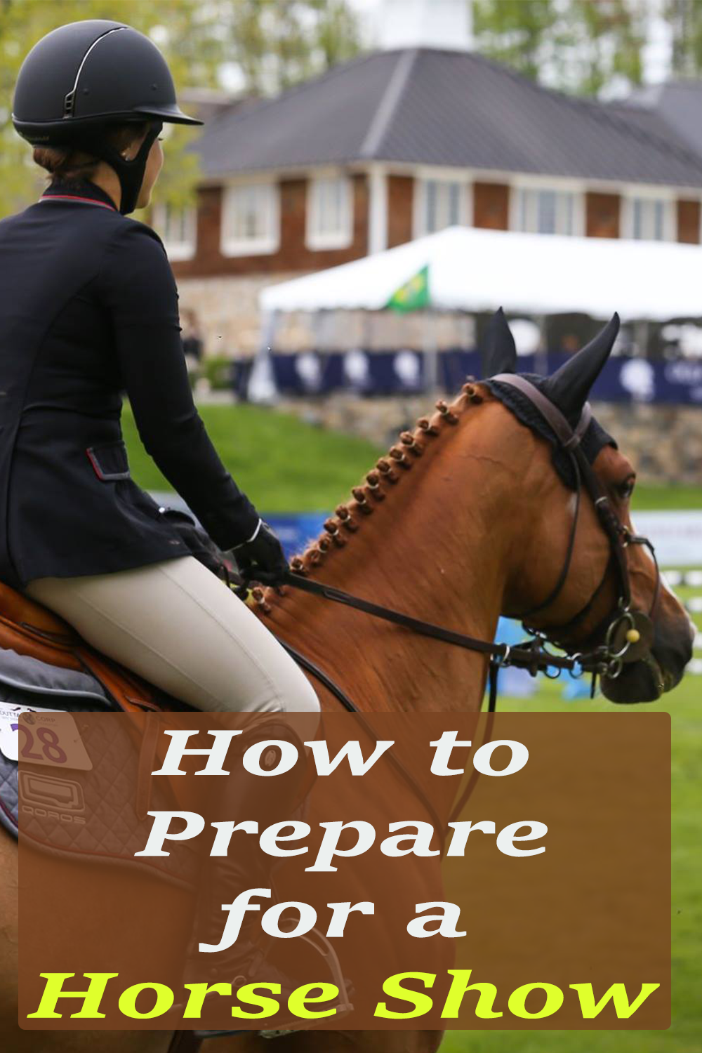photo How to Prepare for a Horse Show