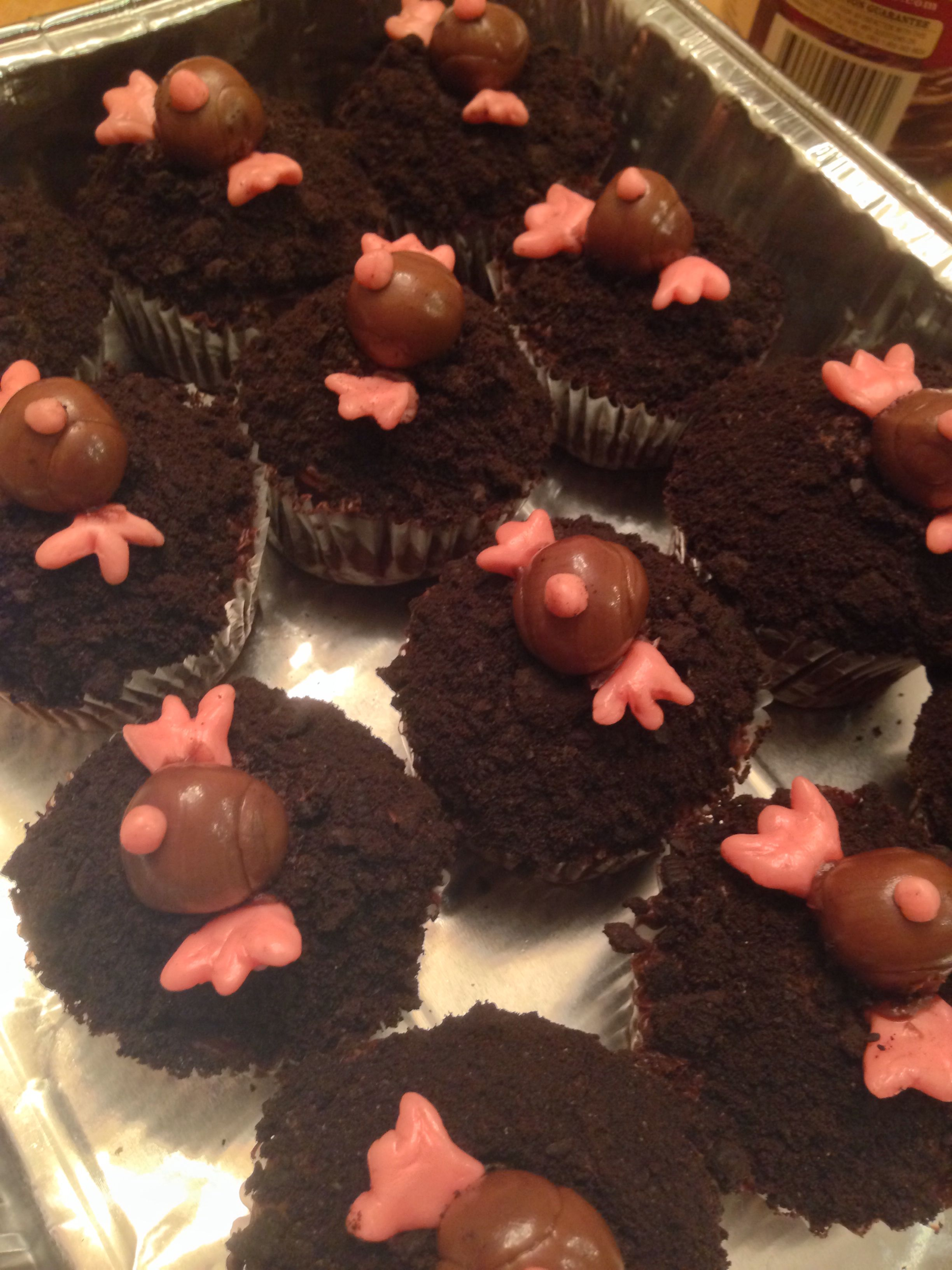 Mole Day Cupcakes With Images Mole Day Mole Recipe Mole