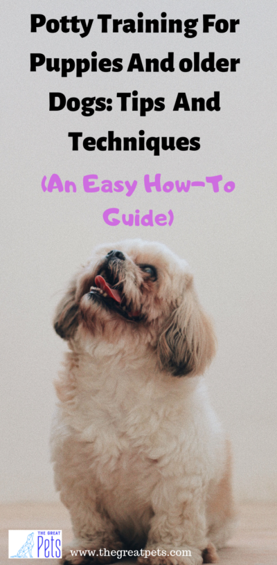 Potty Training Tips For Puppies And Older Dogs How To Guide Potty Training Puppy Puppy Potty Training Tips Puppy Training