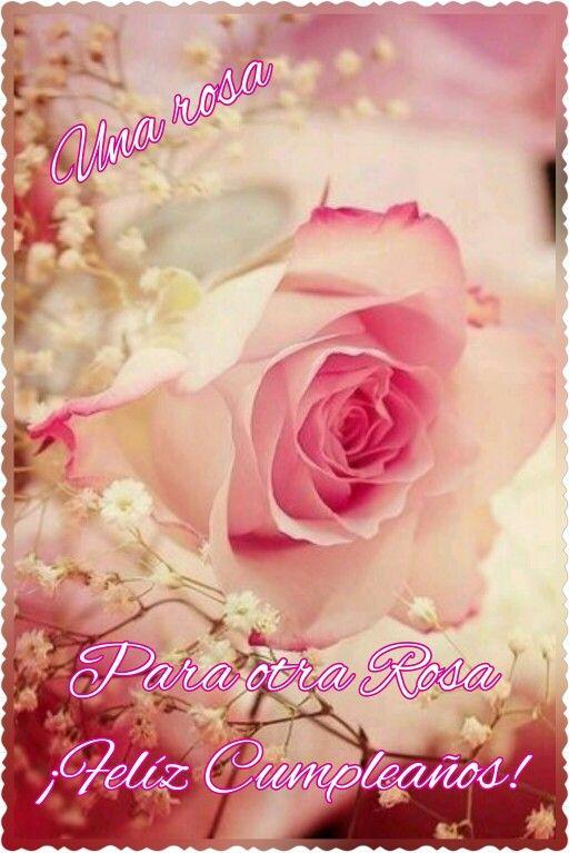 Una Rosa Para Otra Rosa Feliz Cumpleaños Feliz Cumpleaños