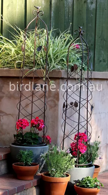 New wrought iron style Obelisk and Garden Trellis From 32