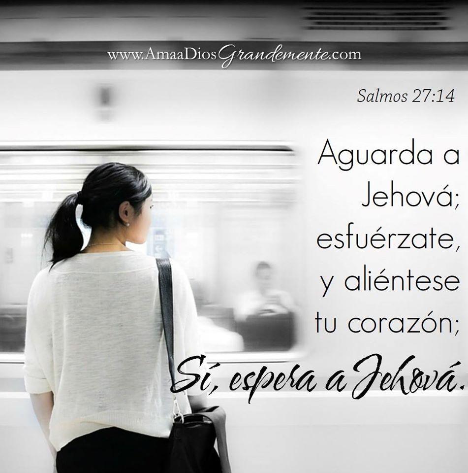 Aguarda a Jehová; esfuérzate, y aliéntese tu corazón; Si, espera a Jehová. Salmo 27:14 #AmaADiosGrandemente #Estudiosbliblicosenlinea #CreciendoenOración #ADG #LGG