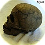Amazon.com: Myard DELUXE Logs - Imitated Human Skull Fire Gas Log for Natural Gas / Liquid Propane Fireplace Fire-Pit (Aged Dark Grey Skull): Home & Kitchen