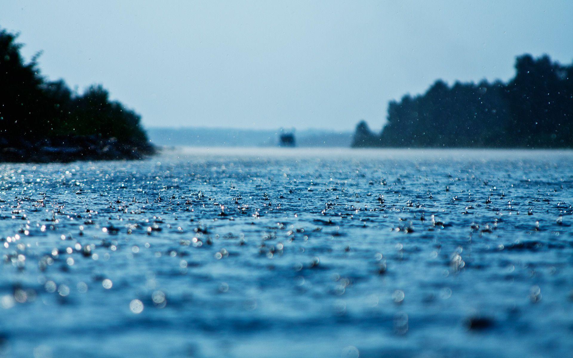 Amazing Rain Water Drops Wallpaper Hd For Desktop