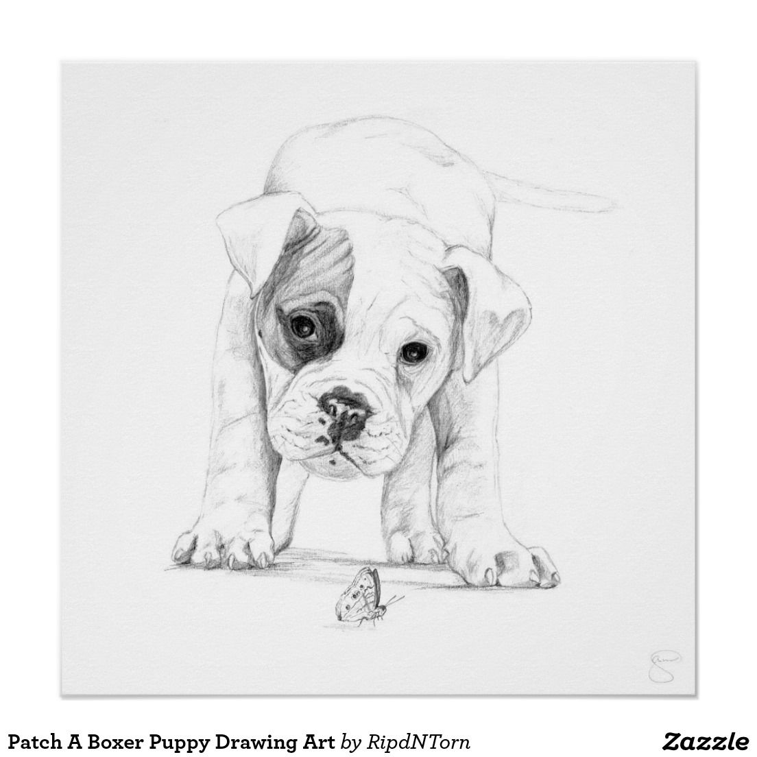 Boxer Puppy Drawing Wiring Diagrams