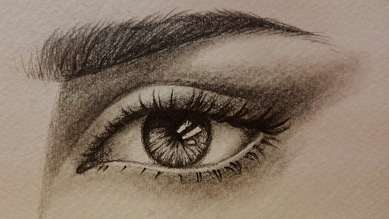 تعليم الرسم بالرصاص كيف ترسم العين والرموش والحواجب شرح بسيط جدا للمبتدئين رسم عين رصاص رموش Art Drawings Art Drawings Sketches Pencil Art Drawings