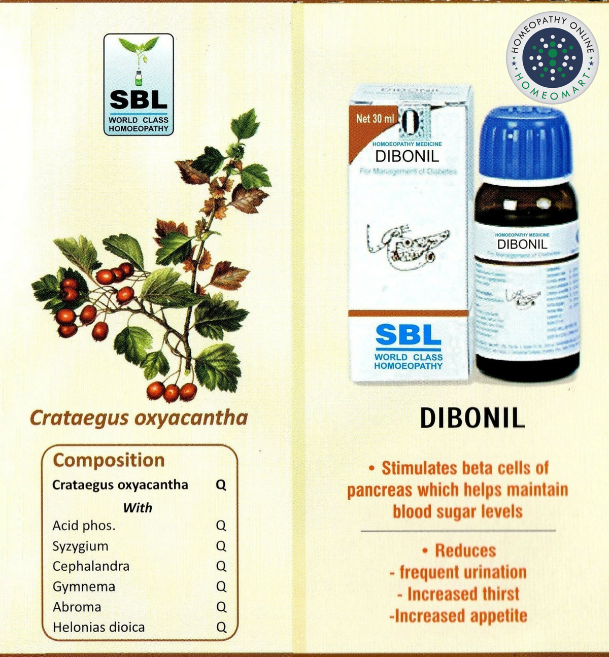 Buy SBL Dibonil Drops homeopathy medicine for diabetes