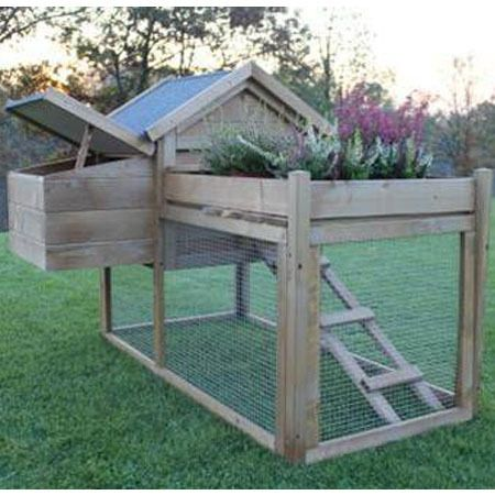 Poulailler Lucky 2 A 3 Poules Carre Potager Carre Potager Poulailler Plan Pour Construire Poulailler