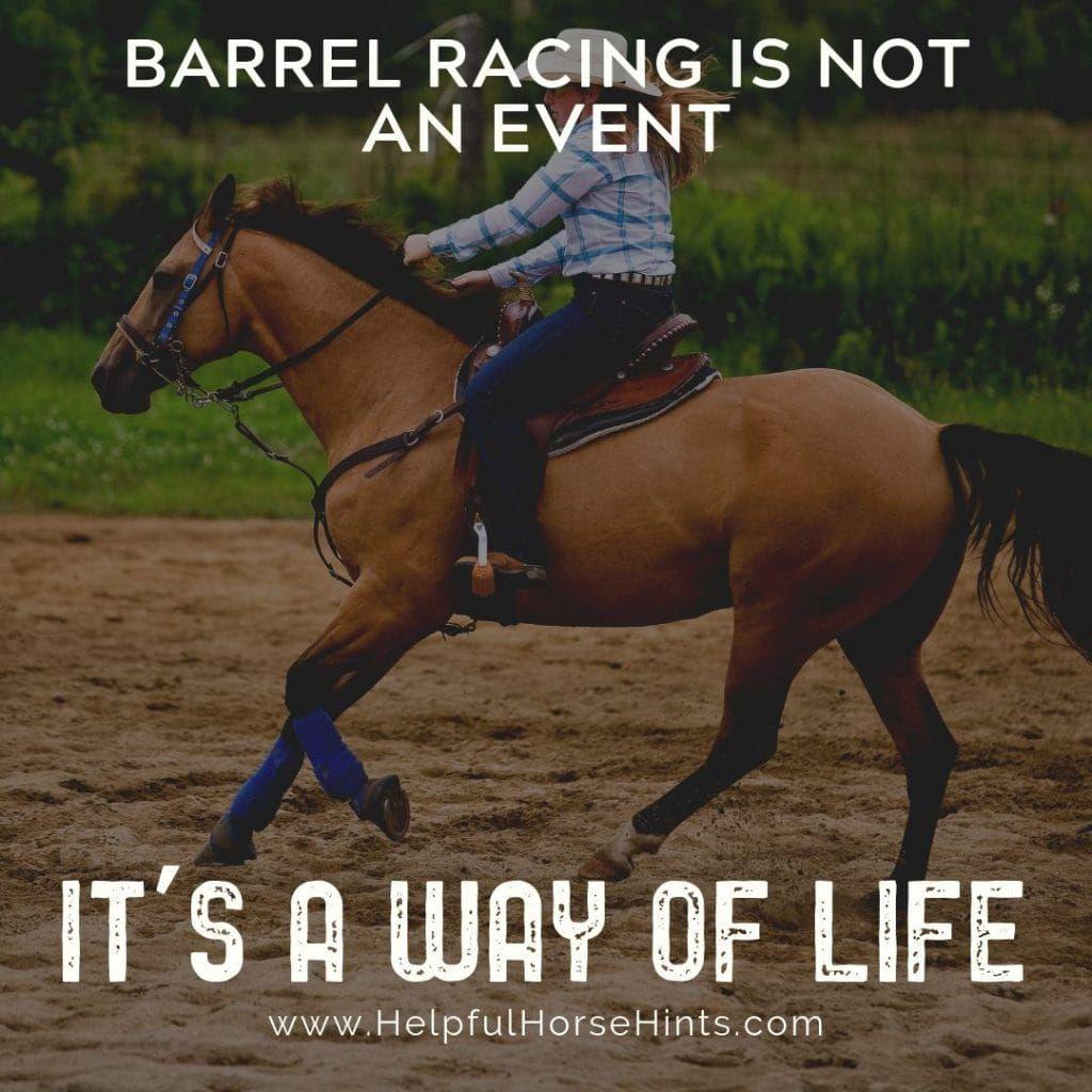 17 ShareWorthy Barrel Racing Quotes Barrel racing