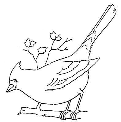 Line Art - Coloring Page - Cardinal on Branch | Moldes de pajaritos ...