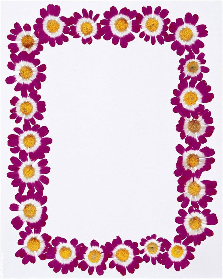 Purple Flowers Frame Borders Design 2014 Sadiakomal. Paper  TemplatesTemplates ...  Paper Border Designs Templates