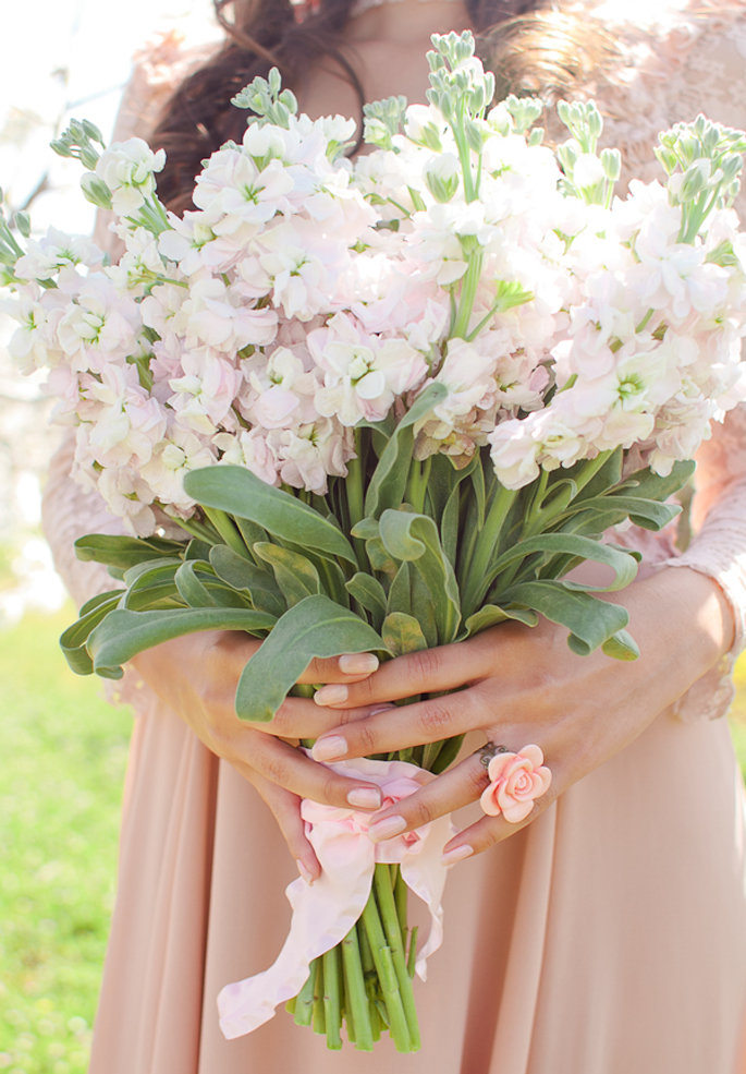 Lovely simple bouquet design of blush stocks captured by Heather ...