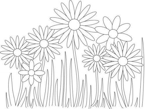 цветы раскраска ромашка: 39 тис. зображень знайдено в ...