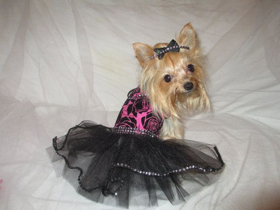 Special Occasion Holiday dog/cat dress by DarlingDivaOutfits, $28.99