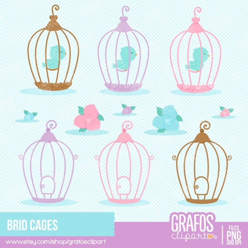 Bird Cages Digital Clipart Set Cages Clipart Bird Clipart Etsy Clip Art Digital Clip Art Bird Clipart
