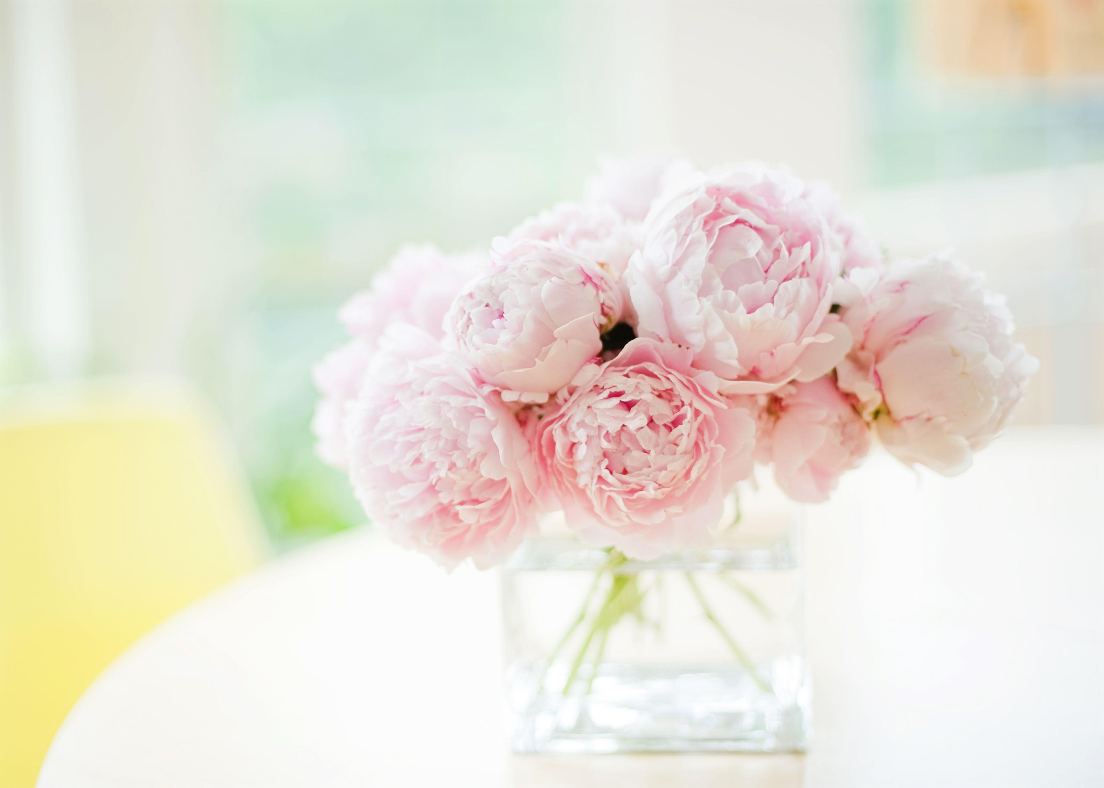 Pink Peonies Bouquet Free Desktop Wallpaper X peonies