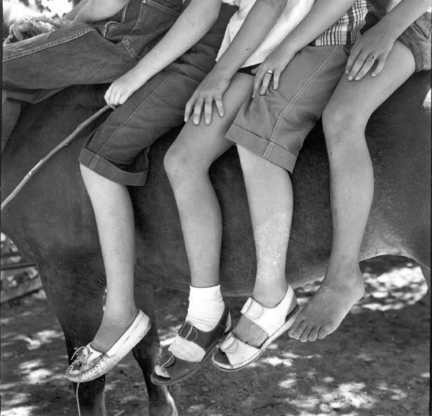 Four young riders in Summer. 1953. Dorothea Lange