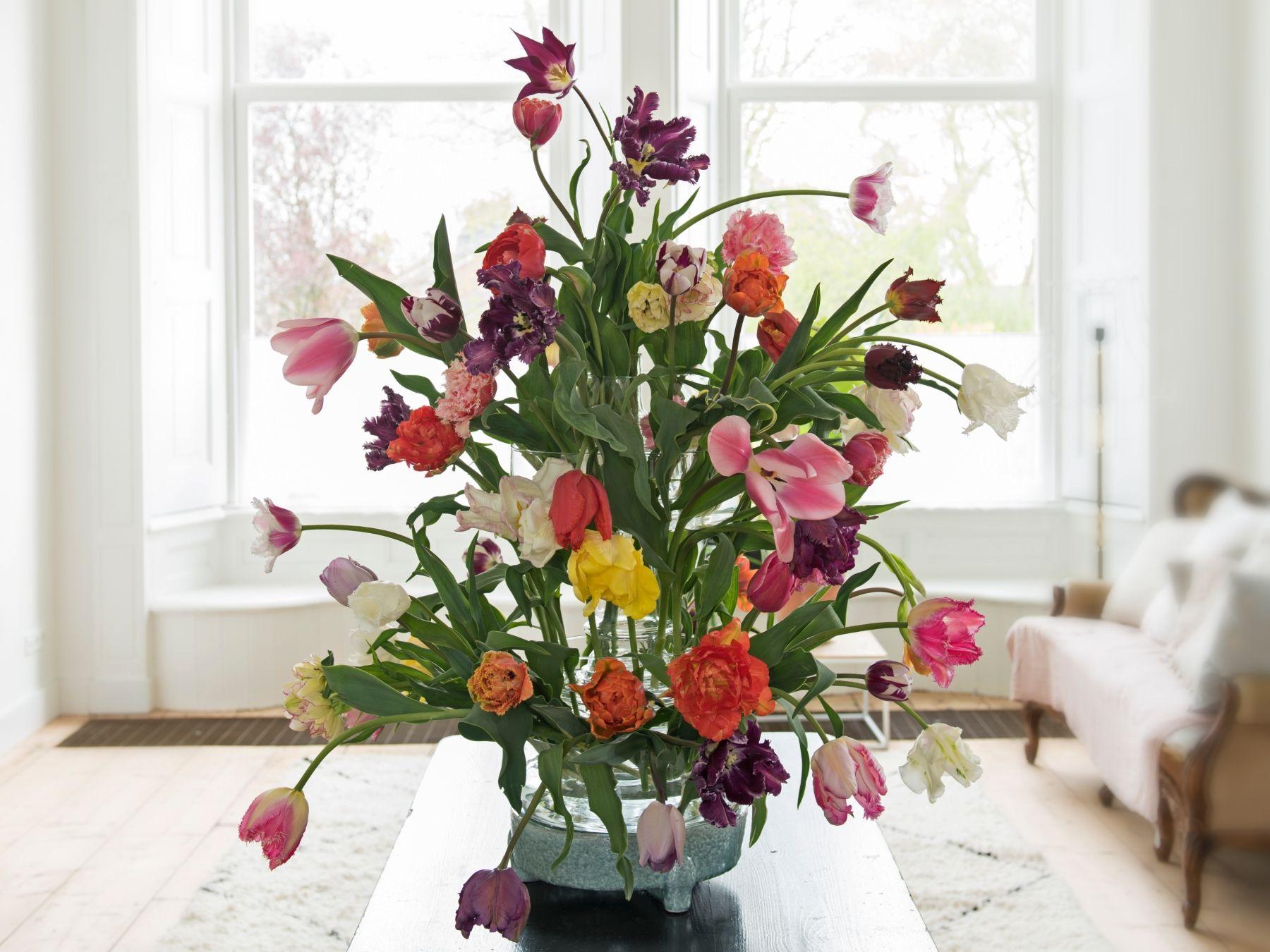 7 Zasad Jak Przedluzyc Swiezosc Kwiatow Cietych Plants Floral Wreath Floral