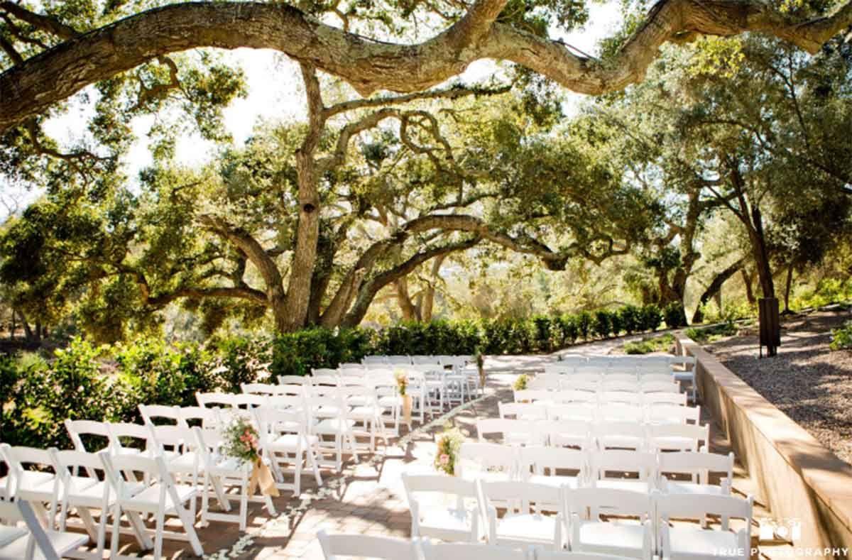 40 Wonderful Backyard Wedding Decorations | San diego ...