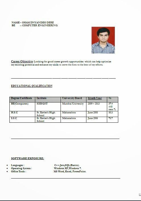 Curriculum Vitae Europass Model Sample Template Example
