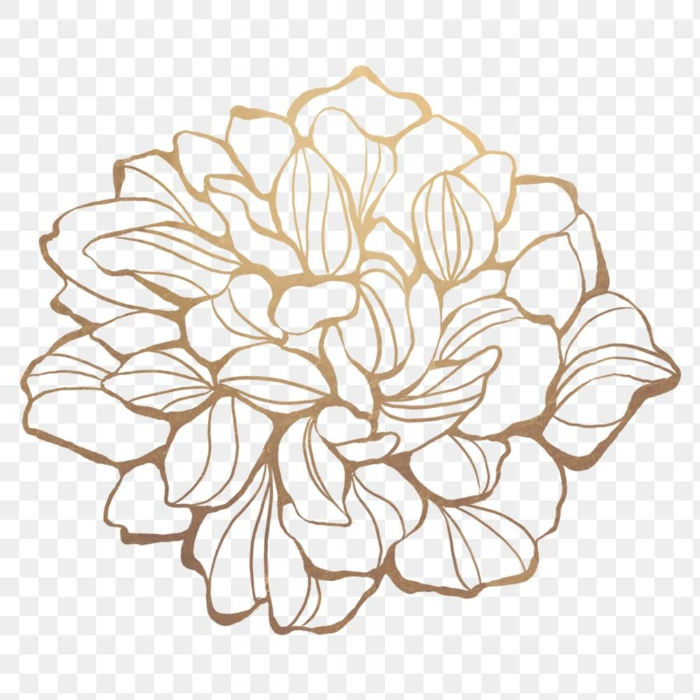Gold Flower Outline Transparent Png Premium Image By Rawpixel Com Nunny Flower Outline Gold Flowers Flower Aesthetic