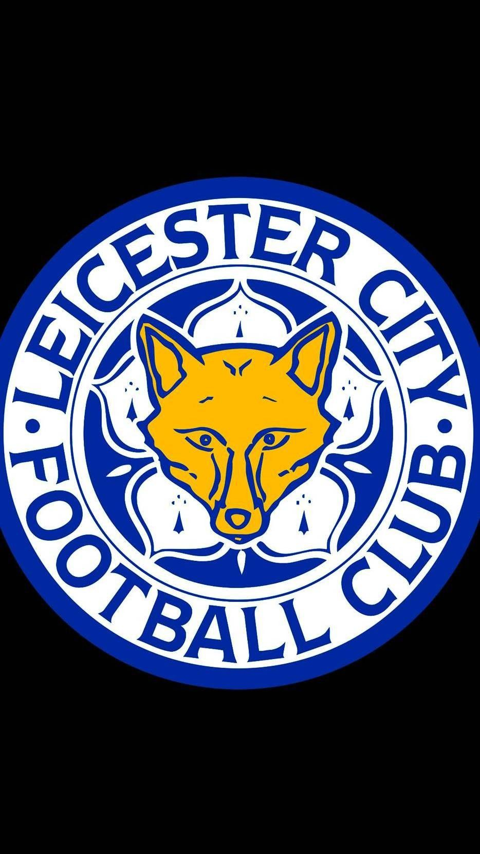 Pin On Leicester City