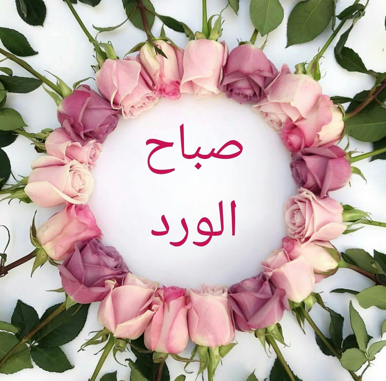صباح الورد Beautiful Morning Messages Beautiful Morning Morning Morning