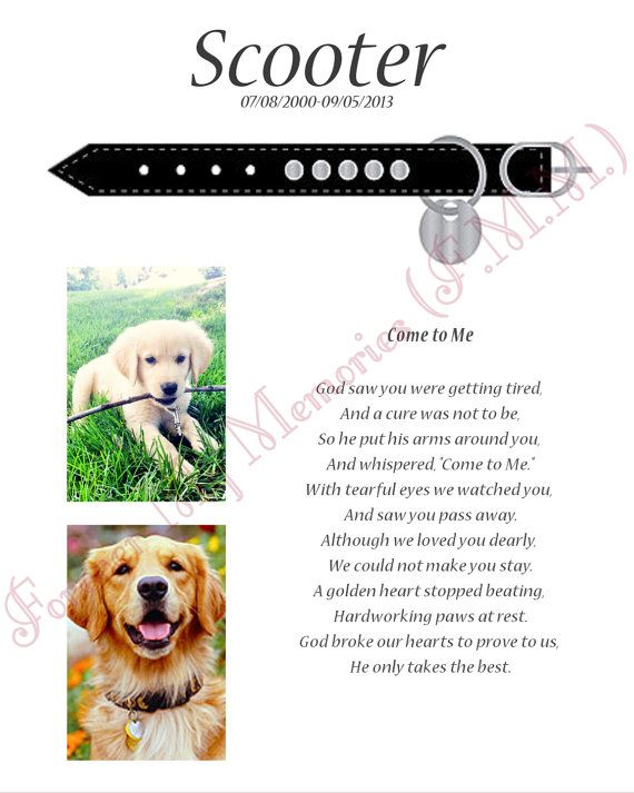 Beautiful Way To Commemorate a Lost Pet. Beautiful Memorial, put ...