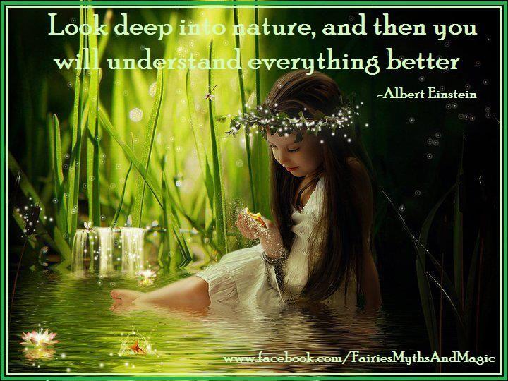 Fantasy Quote Fairy Nature Einstein Www.facebook.com