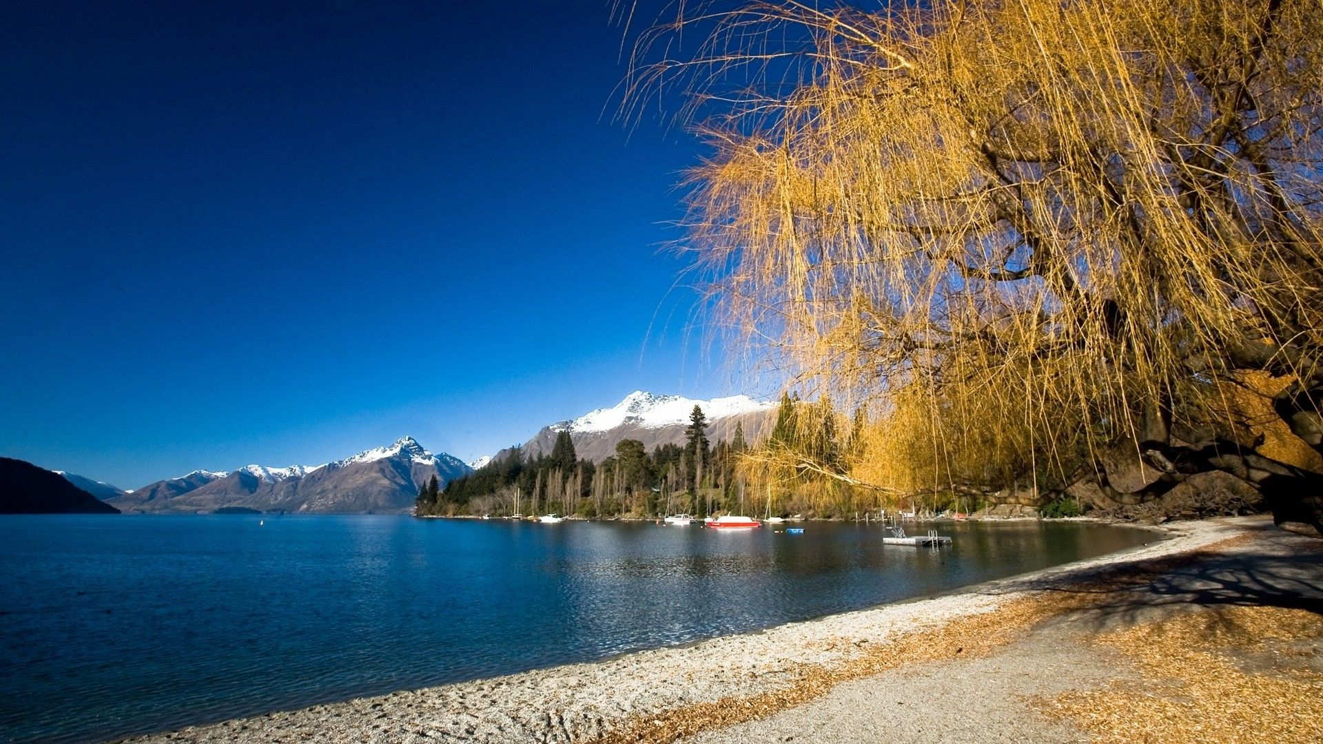Lake Wakatipu Queenstown Photo World Images