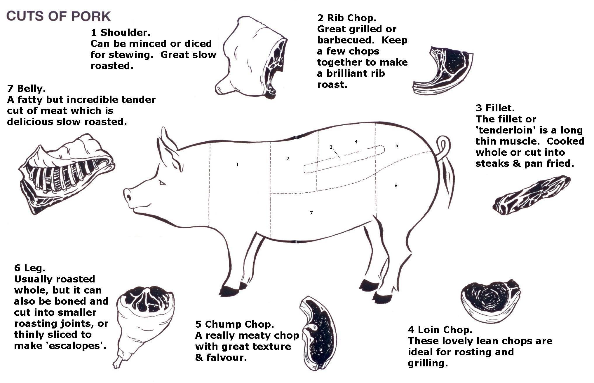 Diagram of cuts of pork. Photo courtesy of: http://beechtreefarm ...